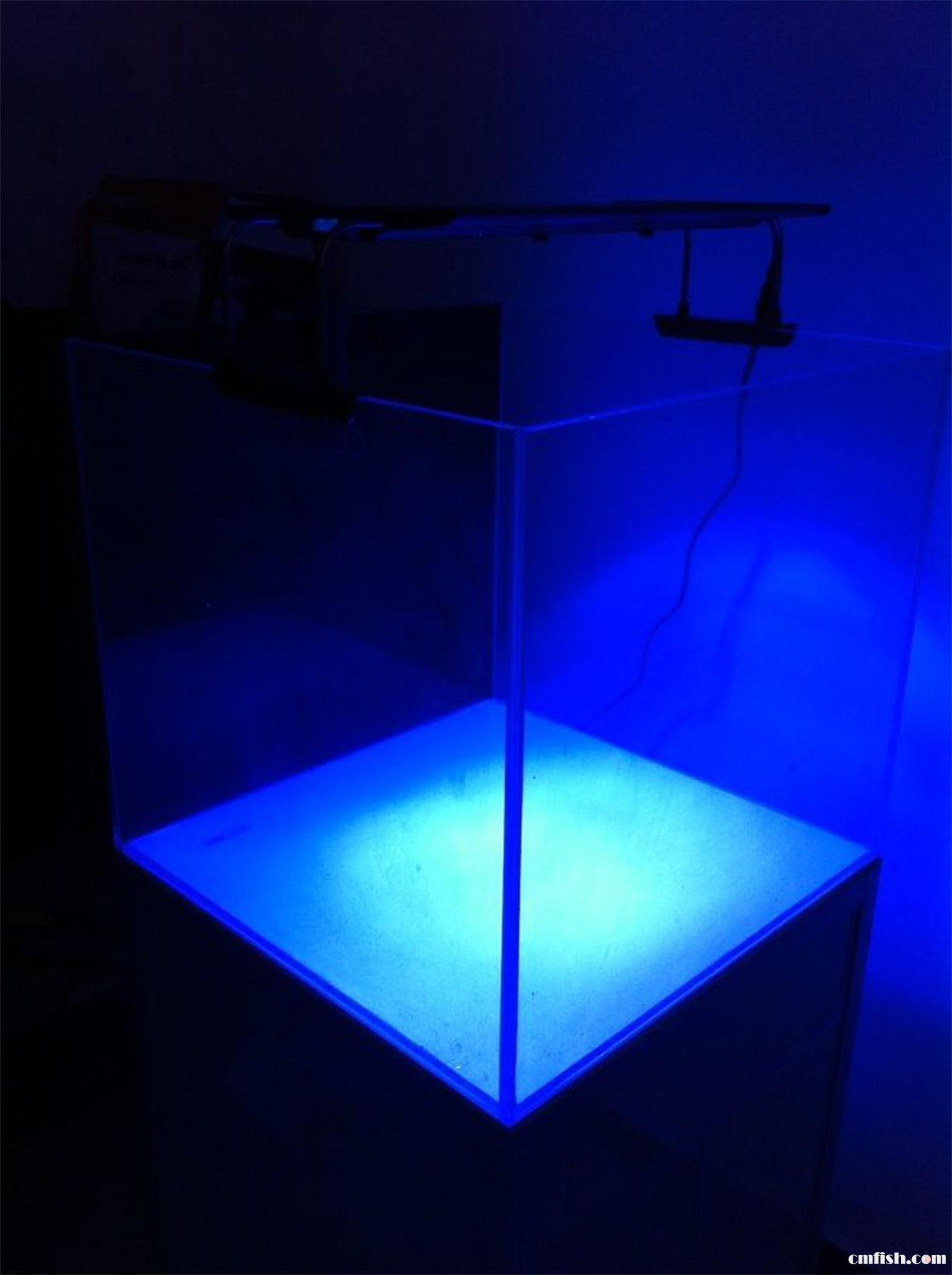 蓝光桶装水名片