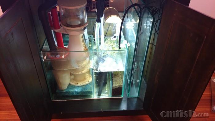 cafe水族 专业 海水鱼缸 底柜 系统设计 定做 最好的海水缸,来自专业