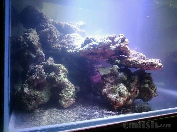 壁纸 海底 海底世界 海洋馆 水族馆 580_435