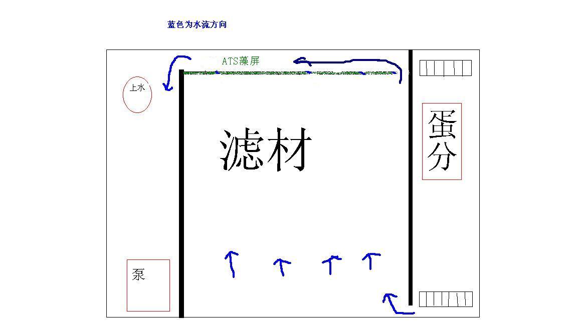海水缸背滤设计图