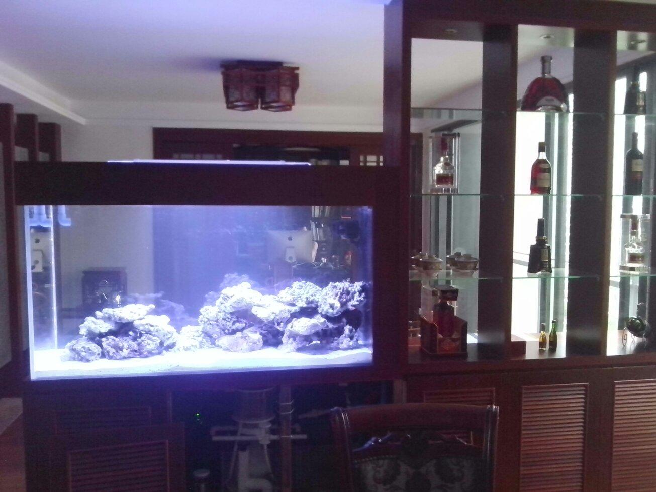酒柜带鱼缸效果图