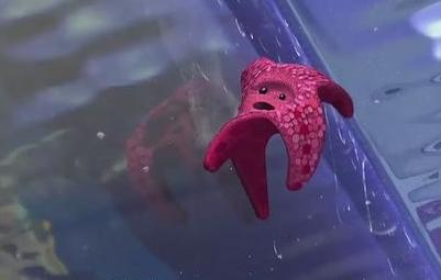 海底总动员中的生物们【更新珊瑚软体及资料