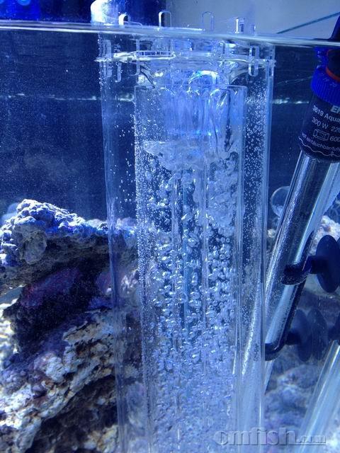 新手请教鱼缸配置方案,万分感谢 - ◆初学者咨