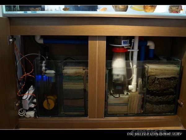 海水鱼缸底缸设计图