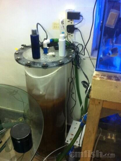 我的神像碟鱼缸!简单配置 高密度FOT(三间火箭