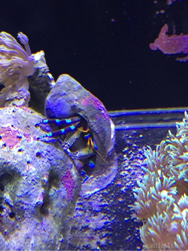 海底世界 海洋馆