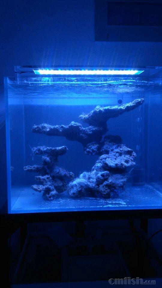 魔方第三层鱼形图解