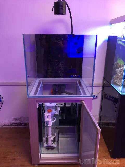 北京地区有在海水鱼缸制作和海水生物,以及造景设计方面需要的,请加