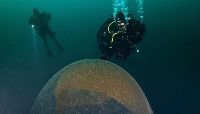 挪威近海中惊见1米高巨蛋